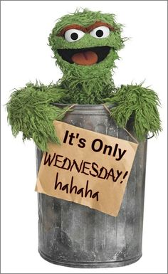 Wednesday Hump Day, Happy Wednesday Quotes, Wacky Wednesday, Wonderful Wednesday, Weekend Quotes, Happy Quotes, Thursday Humor, Monday Memes, Good Morning Good Night