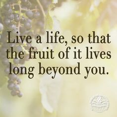 Live a life, so that the fruit of it lives long beyond you.