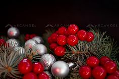 Arcangel -  #photography #Christmas #christmasballs #berries #nature #pine #tree #Xmas #canoneos5dmarkIII #RightsManaged #arcangelimages