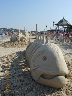 Fish out of Water. Sand sculpture in Boston beach. Sand Sculptures, In Boston, Fish, Random, Beach, Water, Travel, Gripe Water, Voyage