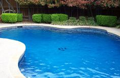 The main factor in the longevity of any pool surface is the water chemistry.