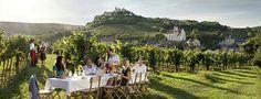 Vignobles du monde : L'Autriche - Magazine du vin - Mon Vigneron