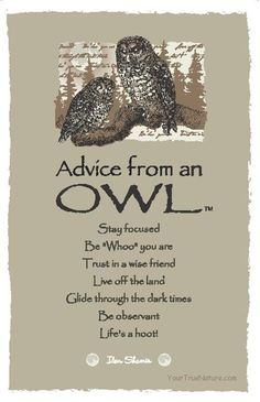 Spirit Totem Animals: Advice from an Owl. Reiki, Animal Spirit Guides, Spirit Animal Owl, Wood Badge, Animal Medicine, Power Animal, Animal Totems, Living Off The Land, Good Advice
