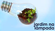 Jardim na lâmpada (como fazer um terrário em uma lâmpada) (artesanato + ...