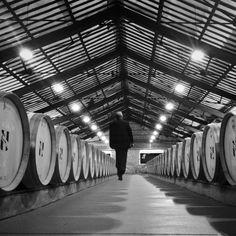 """@Louisa Yafizova's photo: """"BODEGAS CVNE @cvnevino Nave Eiffel, diseñada x Eiffel Denominación de Origen La Rioja. www . cvne . com #LaRiojaApetece #winetourism #arquitecturadelvino @La Rioja"""""""