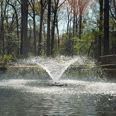 Welcome to Fountain Mountain! One stop online shop for quality fountains for ponds. Visit our site today to see all the beautiful products we offer! Mooring Rope, Decorative Fountains, Water Fountain Pumps, Pond Fountains, Salt And Water, Water Features, Outdoor Living, Waterfall, Ebay