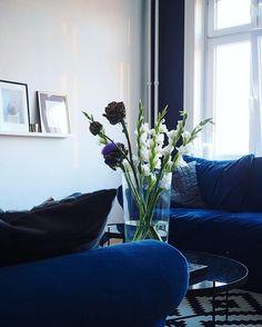 Well, guten Morgen ihr Hübschen  @mybloomydays  #bloom #blooms #blue #decor #decoration #details #flower #flowers #germaninteriorbloggers #Hamburg #hh #inspiration #instadaily #instadecor #interior #interiordesign #interiores #interiors #interiorstyling #living #livingroom #room #velvet