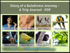 This primary source rainforest journal brings life science concepts home! Grades 2 & NGSS- and ELA-aligned, with assessment and discussion questions. Try the free version or purchase the full version. Rainforest Theme, Virtual Field Trips, Primary Sources, Concept Home, Life Science, Journey, Learning, Assessment, Peru