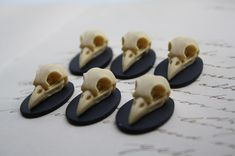 Bird Skull Raven Skull Crow Skull Resin Cameo by LeanderOrnaments
