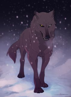 This is sonar he has no mate and no pups. The wolf he liked,snowstorm, left the pack when her father died. Animal Sketches, Animal Drawings, Cool Drawings, Anime Wolf, Fantasy Wolf, Fantasy Art, Wolf Deviantart, Wolf Hybrid, Wolf Character