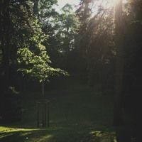 Improvisation #017 Havlíčkovy Sady by hiROkisAiTOh on SoundCloud