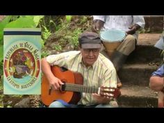 Campo y Sabor: Arracacha! // Agrophonic Music - Colombia