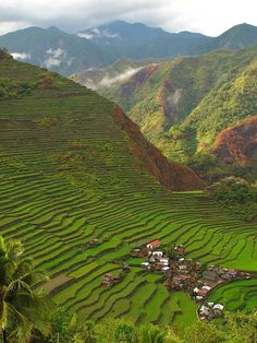 Batad Village, Luzon, Philippines - a UNESCO World Heritage area.