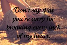 Don't say that you're sorry for breaking every inch of my heart