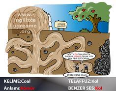 Coal Türkçe anlamı nedir?