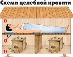 Сон на вуликах з бджолами: лікування та конструкції будиночків (фото)