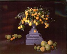 Limonen in Gusseisen Amphore #Limonen #Flowerevents #Florales Design Painting, Design, Art, Cast Iron, Art Background, Painting Art, Kunst, Paintings