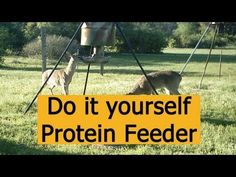 Do it Yourself Protein Deer Feeder Design for Hunting (where legal) Hunting Equipment, Fishing Equipment, Gravity Deer Feeders, Deer Feeder Diy, Genesis 27 3, Deer Attractant, Deer Hunting, Hunting Stuff, Chasing Dreams
