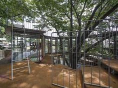Ring Around the Tree - Fuji Kindergarten