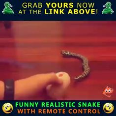 Remote Control Funny Joke Snake Toy Remote Control Funny Joke Snake Toy Related April Fools' Pranks That Nice Parents Would Never, Ever Pull On Their KidsCompetitive light bulb replacement.