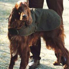 OMG Barbour® Dog Coat