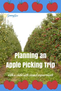 Apple Picking Trips When Your Child is Blind. Going apple picking soon with your blind or visually impaired child? Here are a few tips to ensure you both have a great trip!  http://www.sensorysun.org/blog/apple-picking-trips-when-your-child-is-blind/