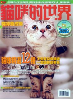 56f407e1dbc 39 Best Cat Magazine images