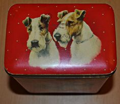 Vintage Fox, Vintage Tins, Vintage Buttons, Wirehaired Fox Terrier, Fox Terriers, Popcorn Tin, Tin Boxes, Candlesticks, Kitsch