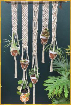 Macrame Plant Hanger Patterns, Macrame Plant Holder, Macrame Plant Hangers, Macrame Patterns, Wall Plant Hanger, Plant Wall, Diy Garden, Herb Garden, Garden Ideas