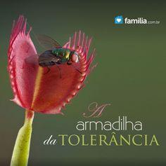 Familia.com.br | A armadilha da tolerância.