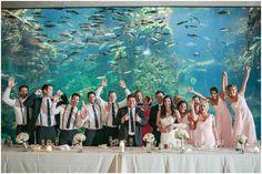 Tiffany Tag Seattle Aquarium Wedding Venues