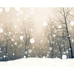 Snowy Photography to Set Your Christmas Spirit ❤ liked on Polyvore featuring backgrounds, christmas, winter, pictures, extras, fillers and scenery