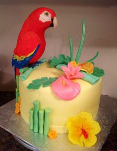 parrot cake - Google Search Birthday Party Treats, Baby Birthday Cakes, Wedding Cakes With Cupcakes, Cupcake Cakes, Australia Cake, Drum Cake, Pastel Cakes, Jungle Cake, Bird Cakes