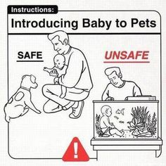 Introducing Baby To Pets - OH MY!!! I LAUGHED SO HARD WHEN I SAW THIS!!!!