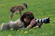 Beware of the dangers of photographing wildlife! This could be you. ; ) ~ with Cristina Guerreiro