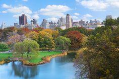 Центральный парк Нью-Йорк: 12 тыс изображений найдено в Яндекс.Картинках