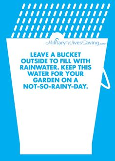 Water Conservation Tips & Gardening