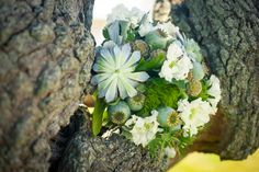 #nj #wedding #springlake #anyafoto #fallwedding #october #maggiesottero #isadora #weddingphotos #musttakeshots #bouquet
