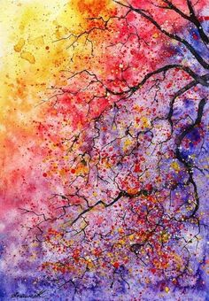 Tree branches in colour...