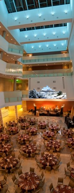 Our Jigsaw glass ceiling so your next event can be under the stars
