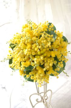 Wedding Bouquet With Yellow Mimosa Flower + Green Foliage Flowers Nature, Love Flowers, Yellow Flowers, Beautiful Flowers, Le Mimosa, Yellow Bouquets, Herb Garden Design, Yellow Wedding, Bride Bouquets