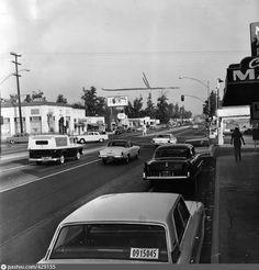 CUC Canotta Torettos Garage Los Angeles California Car Macchina Fast And Furious