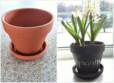 Chalkboard pot for flowers