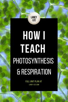 Plan an engaging and comprehensive Photosynthesis & Respiration mini unit for your middle school science class. Check out all my tips and advice here! Middle School Science, Elementary Science, Teaching Science, Science Education, Life Science, Physical Science, Science Classroom, Upper Elementary, Science Resources