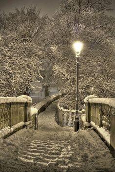 L. - Light in the snow