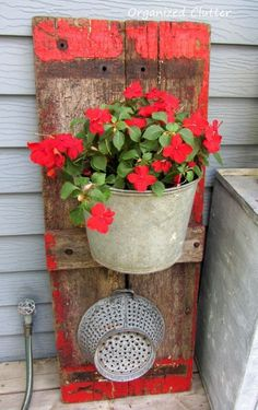 Potted plant love