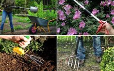 Really useful tools for gardeners with a disability - Gardening