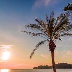 【hitomi_pleinelune】さんのInstagramをピンしています。 《. Sunset of a soft colors✨🌴 . . 材木座テラスから📷 柔らかい色の夕焼け☀️ いつもここの前を通って 材木座海岸へ向かい 逗子マリーナまで 歩いて行きます🌴🚶♀️ 私も材木座に住みたいなー😫(笑) . . Location : Kanagawa,Japa . . 📷2017/1/6 . . #sunset #sky #beach #sea #palmtree #genic_mag #genic_beach #genic_japan #日産公式プロトラベラー #kanagawaphotoclub #filmwalkr #zaimokutheterrace #夕日 #夕焼け #夕暮れ #夕空 #空 #海 #サンセット #ビーチ #ヤシの木 #材木座 #鎌倉 #湘南 #材木座テラス》