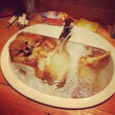 Ahhh ,essa banheira é só minha°°°TanDenoni°°°