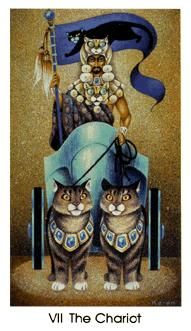 June 17 Tarot Card: The Chariot (Cat People deck) You are a force to be reckoned with now. Your dreams are waiting ... go get 'em